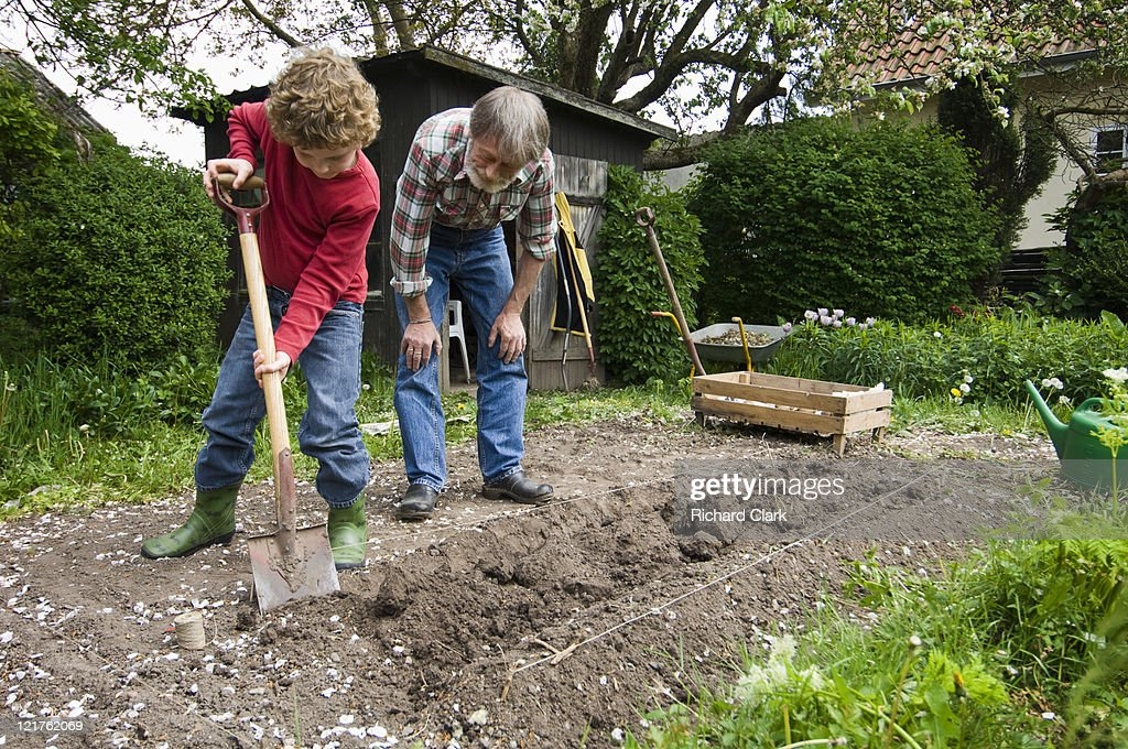 Boy Helping Man Dig Trench Stock Photo - Getty Images