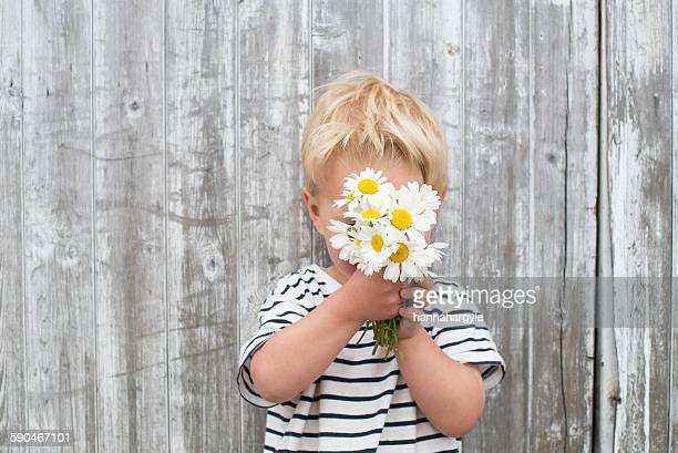 Boy hiding behind daisies