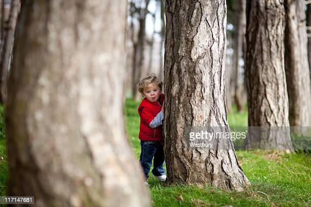 木の後ろに隠れて少年