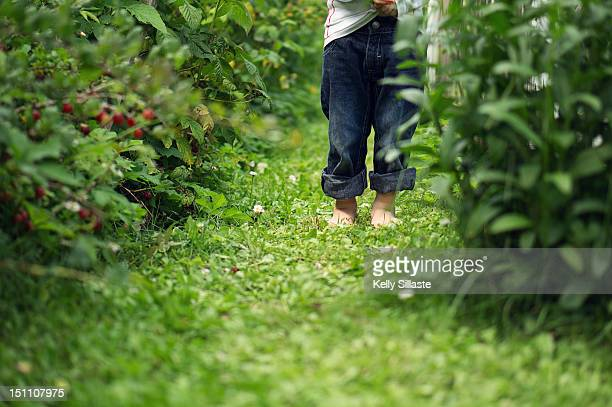 Boy hiding in bushes