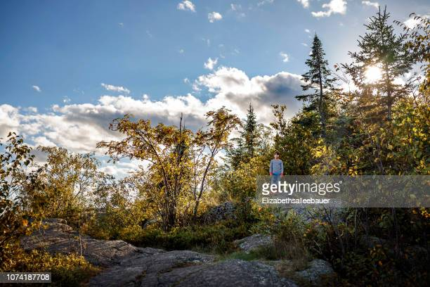 boy hiking through a forest, lake superior provincial park, united states - lake superior provincial park stock pictures, royalty-free photos & images