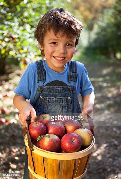 Garçon tenant panier de fraîchement cueillies pommes dans le Minnesota.