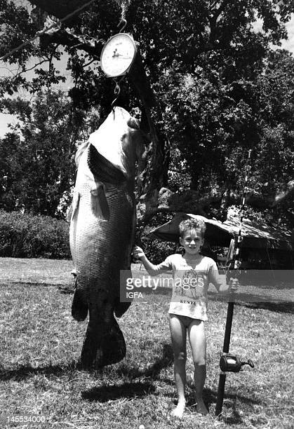 A boy holding a fishing rod stands next to a huge nile perch he caught on March 31 1988 at Rusinga Island Lake Victoria Kenya
