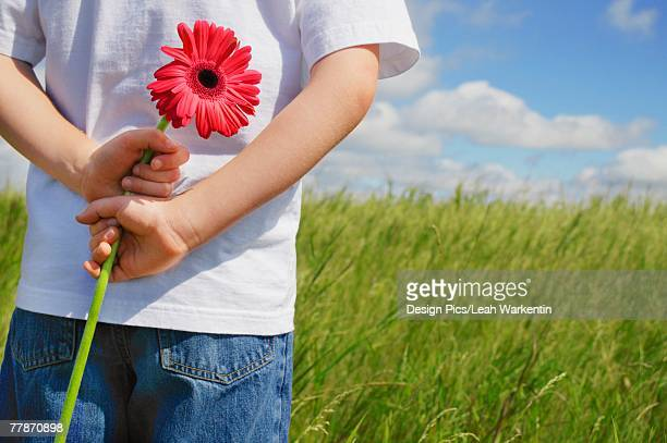Boy holding a flower behind his back