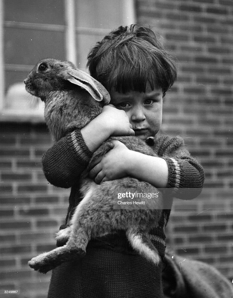 A boy holding a hare. Original Publication: Picture Post - 6132 - Have We Abolished Poverty? - unpub.