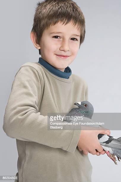 "boy holding a pigeon - ""compassionate eye"" fotografías e imágenes de stock"