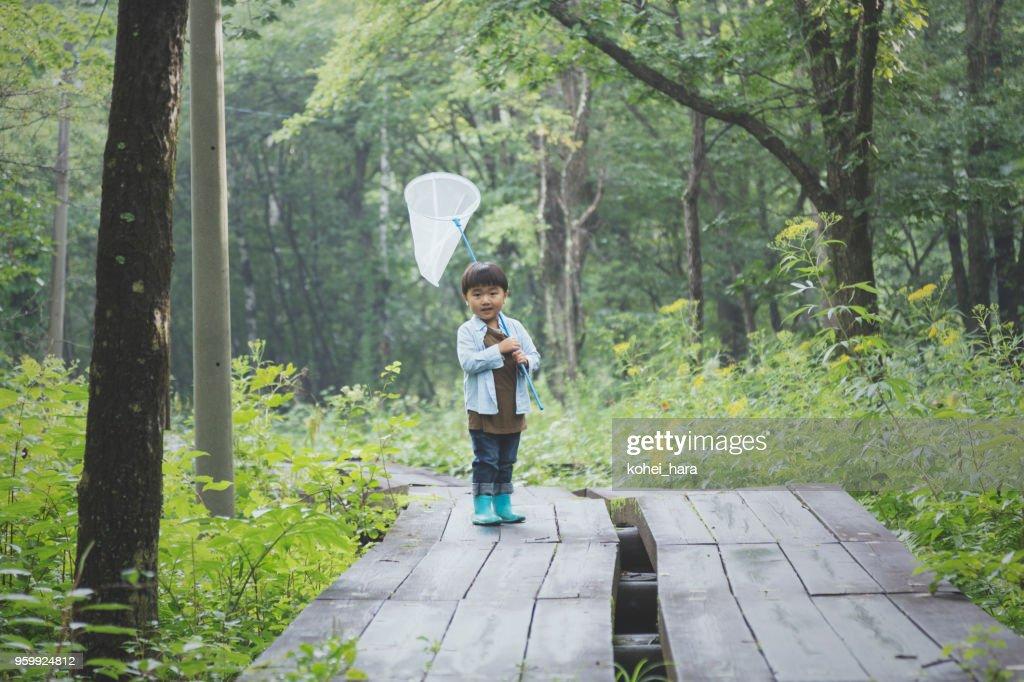 Junge hält ein Insektenschutz-Netz in einem Wald : Stock-Foto