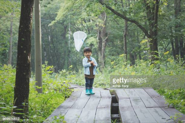 森の中、防虫網を保持している少年 - 夏休み ストックフォトと画像