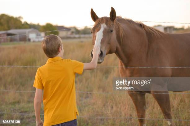 Boy holding barbed wire fence with horse