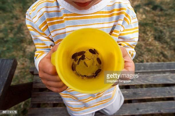 Boy holding bucket of bugs