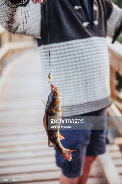 boy holding caught fish - perching stock photos and pictures