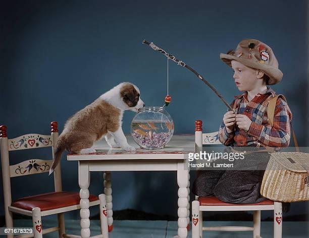 boy holding fish from fishbowl  - mamífero con garras fotografías e imágenes de stock