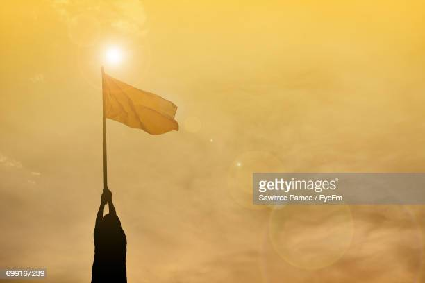 boy holding flag against cloudy sky during sunset - 旗 ストックフォトと画像