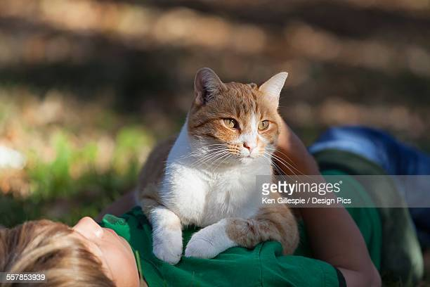 boy holding his cat - puss pics stock photos and pictures