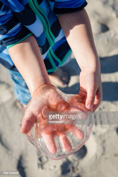 Boy holding jellyfish in his hand