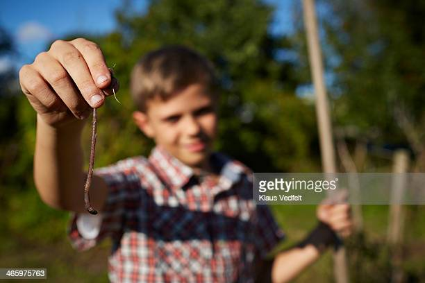 Boy holding up earthworm, worm in focus