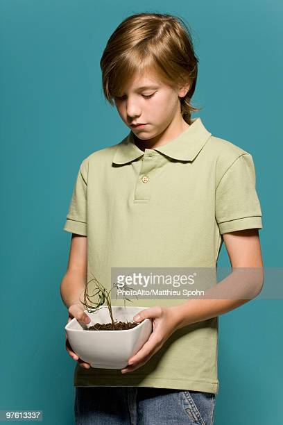 boy holding wilted potted plant - three quarter front view stock pictures, royalty-free photos & images