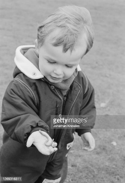 boy holding worm - 1999 stock pictures, royalty-free photos & images