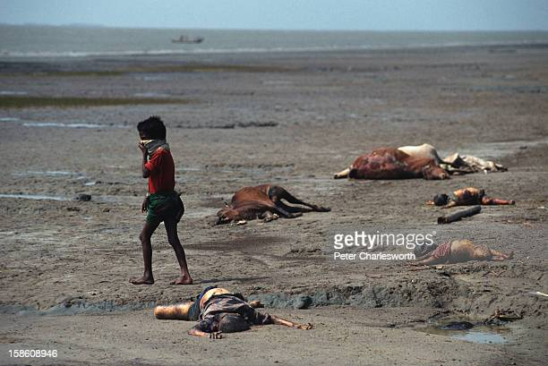 A boy holds a cloth to his face against the stench of dead bodies and cattle carcasses that lie littered along the shores of Kutubdia Island which...