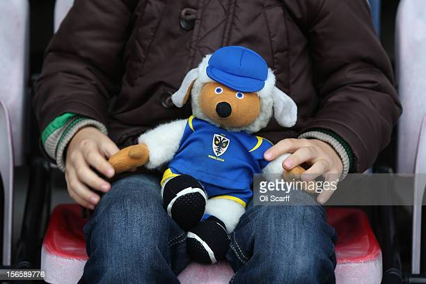 A boy holds a soft toy of AFC Wimbledon's Womble mascot 'Haydon' before the npower League Two match between AFC Wimbledon and Aldershot Town at the...
