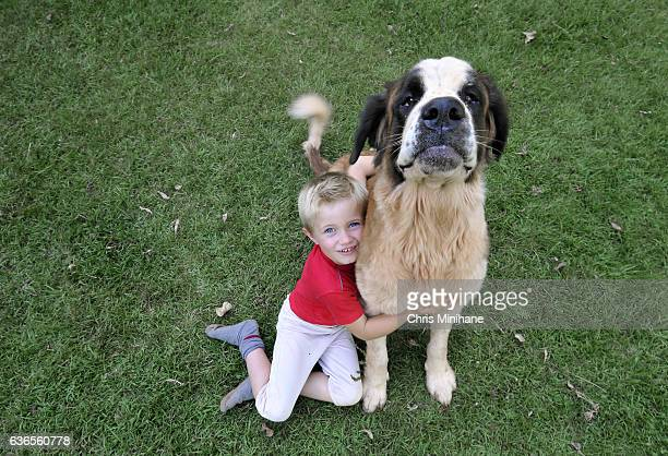 A Boy Hugging His Dog in the Grass - Stock Photo