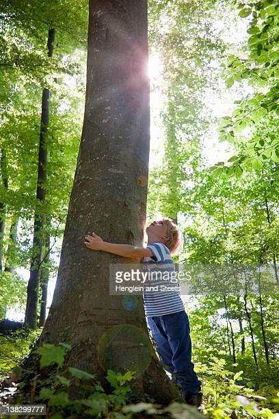 Boy hugging tree in forest