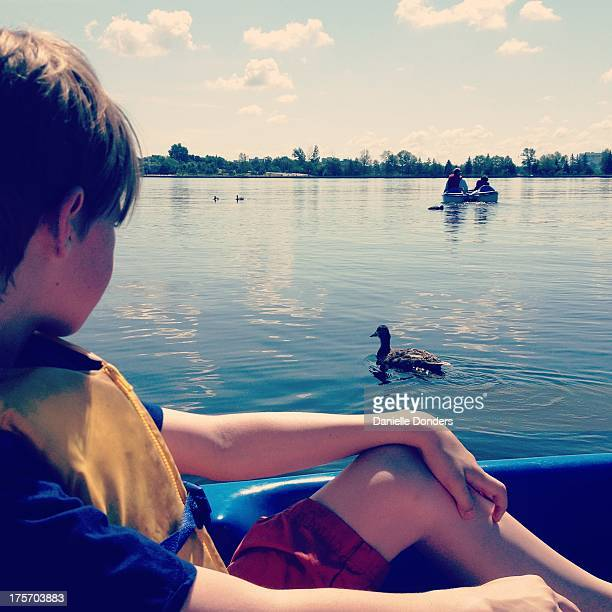 Boy in a boat looking at a duck