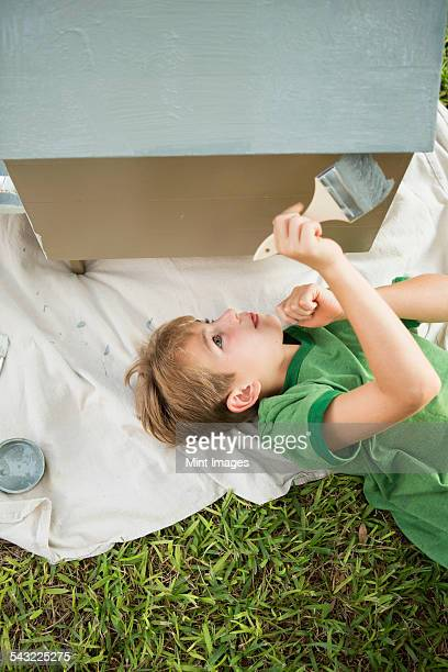 A boy in a garden, painting a dog house.