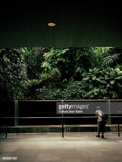 Boy in a zoo