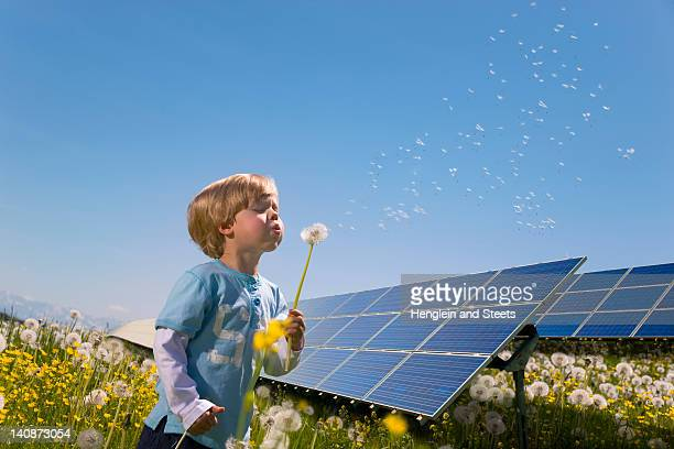 Boy in field with solar panels