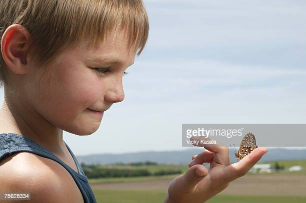 Boy (4-5) in fields, looking at butterfly on finger, close-up, profile