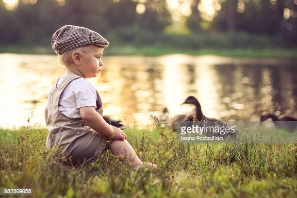 Boy (12-23 months) in flat cap sitting on lakeshore near ducks