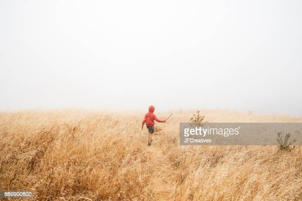 Boy in foggy field landscape, Fairfax, California, USA, North America
