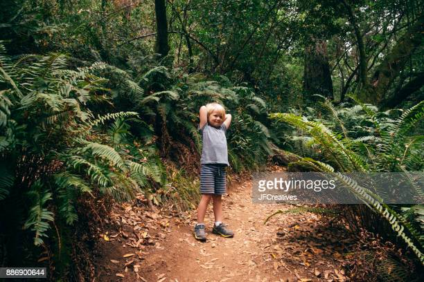 Boy in forest looking at camera smiling, Fairfax, California, USA, North America
