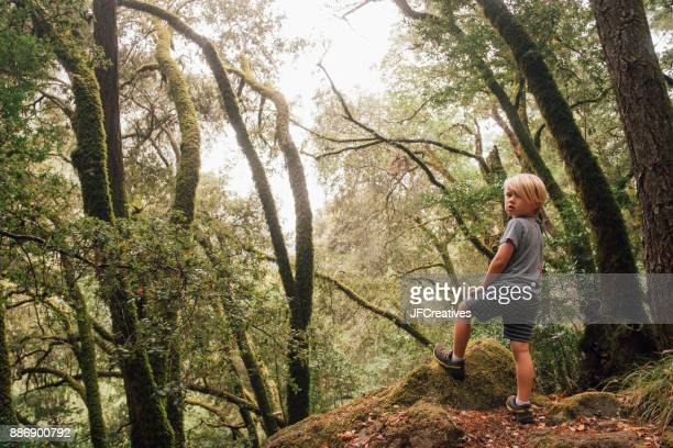 Boy in forest looking over shoulder at camera, Fairfax, California, USA, North America