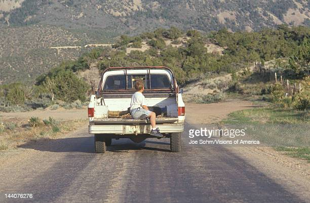 A boy in the back of a pickup truck chasing a dog in the NM desert