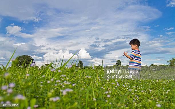 Boy in the meadow