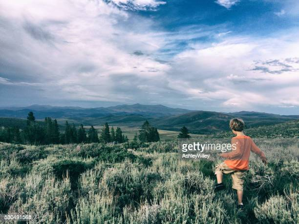 boy in the summer wilderness - sagebrush stock pictures, royalty-free photos & images