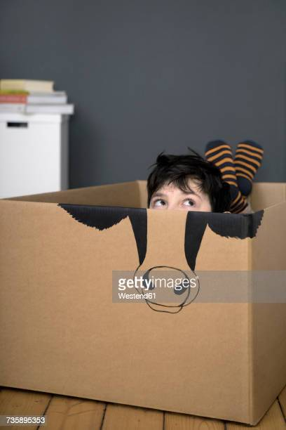 Boy inside a cardboard box painted with a cow