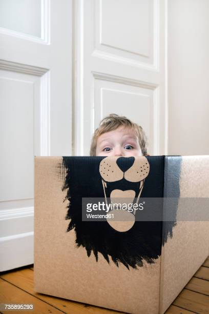 boy inside a cardboard box painted with a lion - lion feline stock pictures, royalty-free photos & images