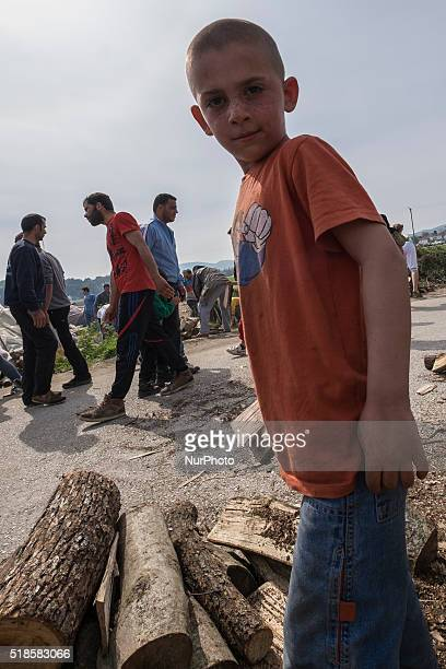 A boy is gathering fire woodIdomeni Greece 1 April 2016 The life in the camp is getting harder and harder especially now that the agreement between...