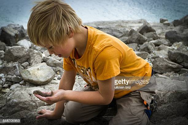 boy is playing with a lizard