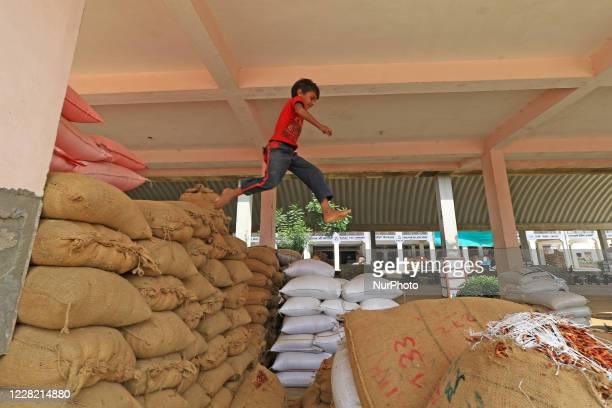 Boy jump on grain sacks at Kukar Kheda Grain Market following the announcement of 4 days strike by Rajasthan Khadya Padarth Vypar Sangh against the...