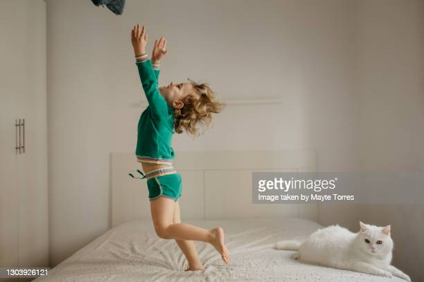 boy jumping in bed next to the cat - animal doméstico fotografías e imágenes de stock