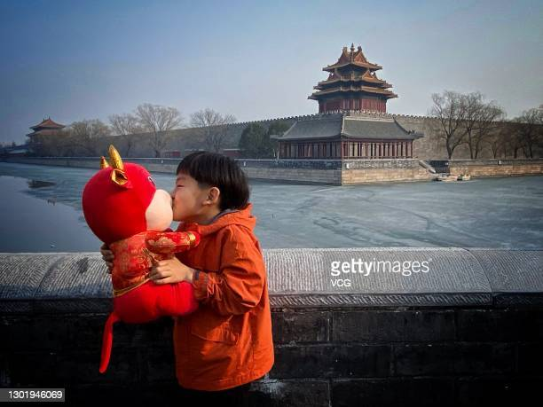 Boy kisses a toy bull in front of the Corner Tower of the Forbidden City on the first day of Chinese New Year, the Year of the Ox, on February 12,...