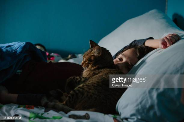 boy lays in bed awake while his tabby cat snuggles up against his face - thousand oaks stock pictures, royalty-free photos & images