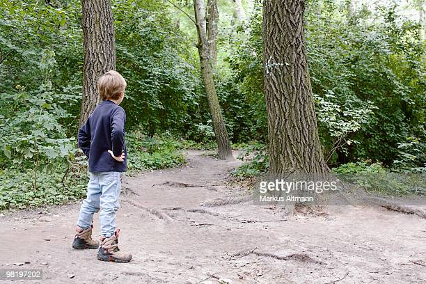 Boy looking at an arrow on a tree