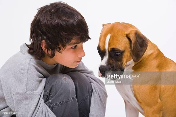 Boy looking at boxer dog