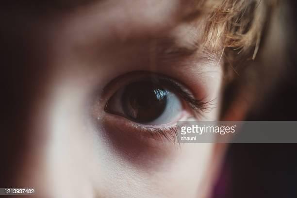 jongen die camera bekijkt - bruine ogen stockfoto's en -beelden