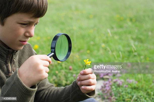 Boy looking at flower through magnifying glass